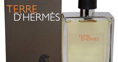 Recensione-Hermes-Terre-dHermes-Eau-de-toilette-spray-Uomo-100-ml-390x205  %Image Name